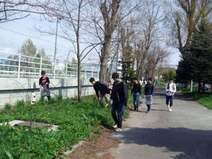 大野新道沿い
