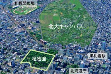 概要・沿革 | 北海道大学植物園